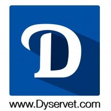 Dyservet.com profile