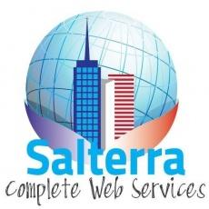 Salterra Web Service profile