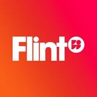 Flint profile