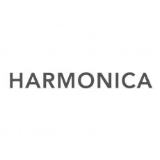 Harmonica profile