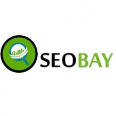 SeoBay India profile