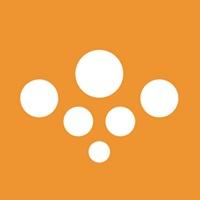 Serif Group profile