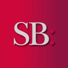 Silver Bullet Marketing Ltd profile