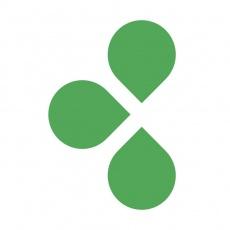 Limetree Consultancy profile