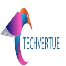 Techvertue Technology profile