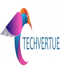 Techvertue Technology profile