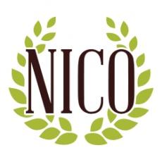 Nico Associates profile