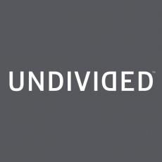 Undivided profile