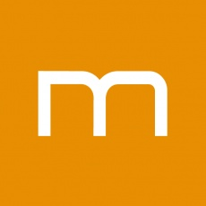 MESH profile