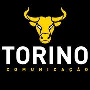Torino Communication profile