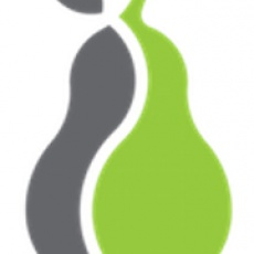 Pear Analytics profile