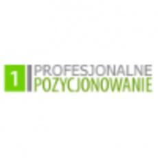 Profesjonalne Pozycjonowanie profile