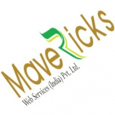 Mavericks Web Services (India) Pvt. Ltd. profile